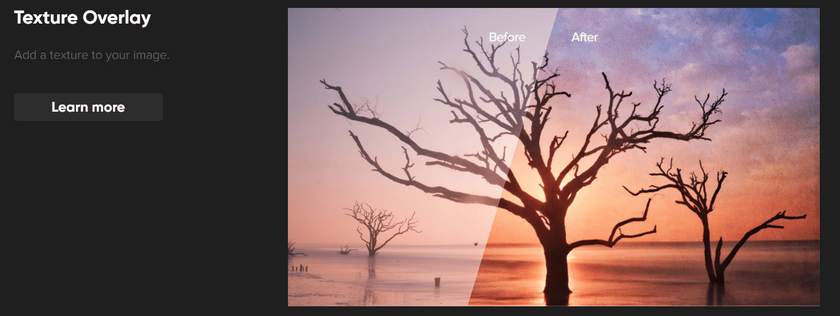 The Best Photo Editing Software in 2019 You May Not Know Of Image1