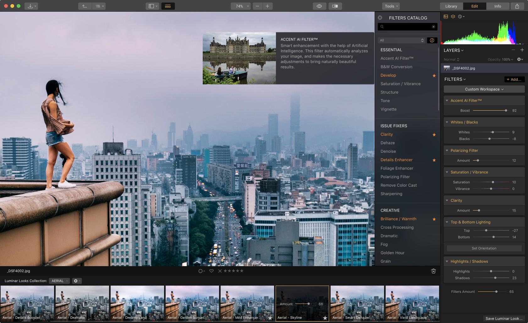 Alles, was du über Luminar mit integrierter Bibliothek wissen musst Image5