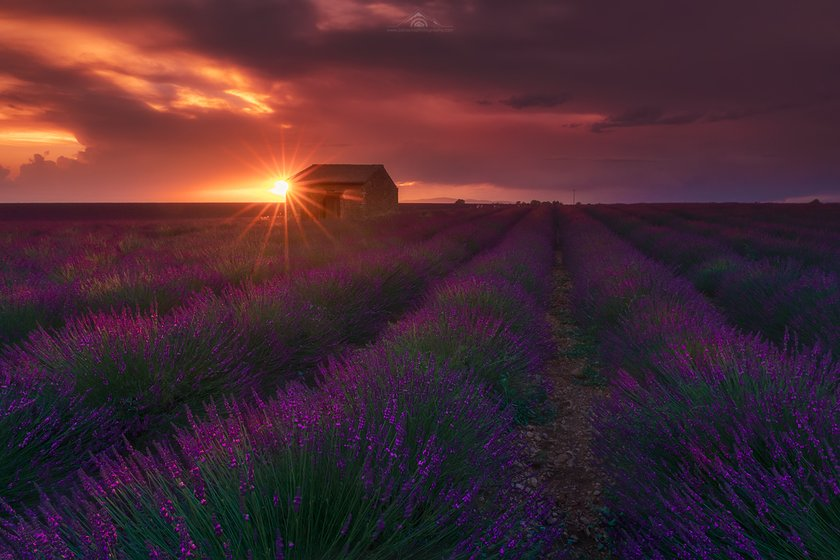 Best photography spots in Valensole by Jabi Sanz Image2