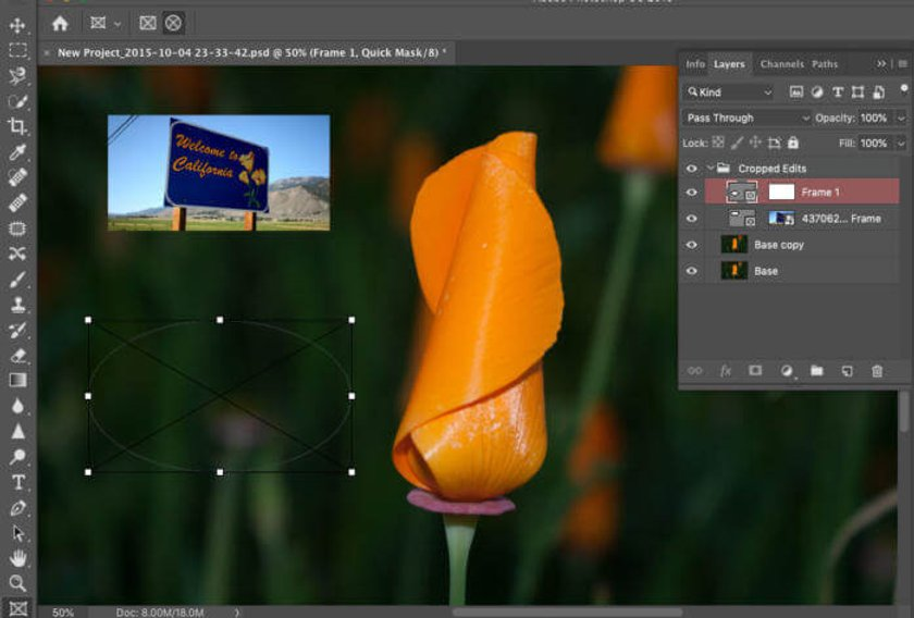 The Best Photo Editing Software for Beginners in 2020 (Free/Paid) Image7