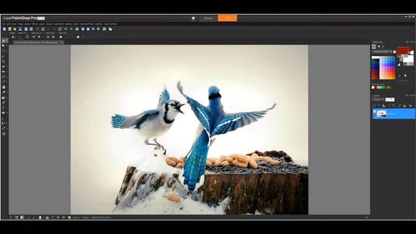 The Best Photo Editing Software for Beginners in 2020 (Free/Paid) Image9