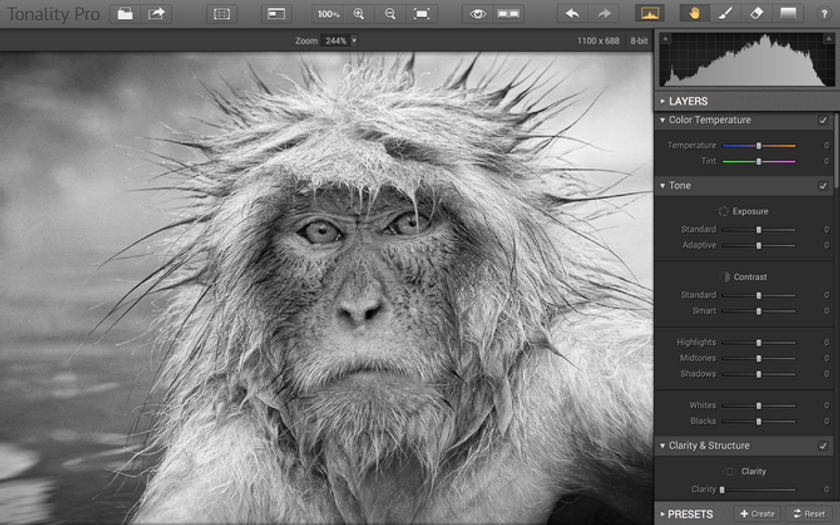 Tonality Pro Now Includes Support of Photoshop Smart Objects Image1