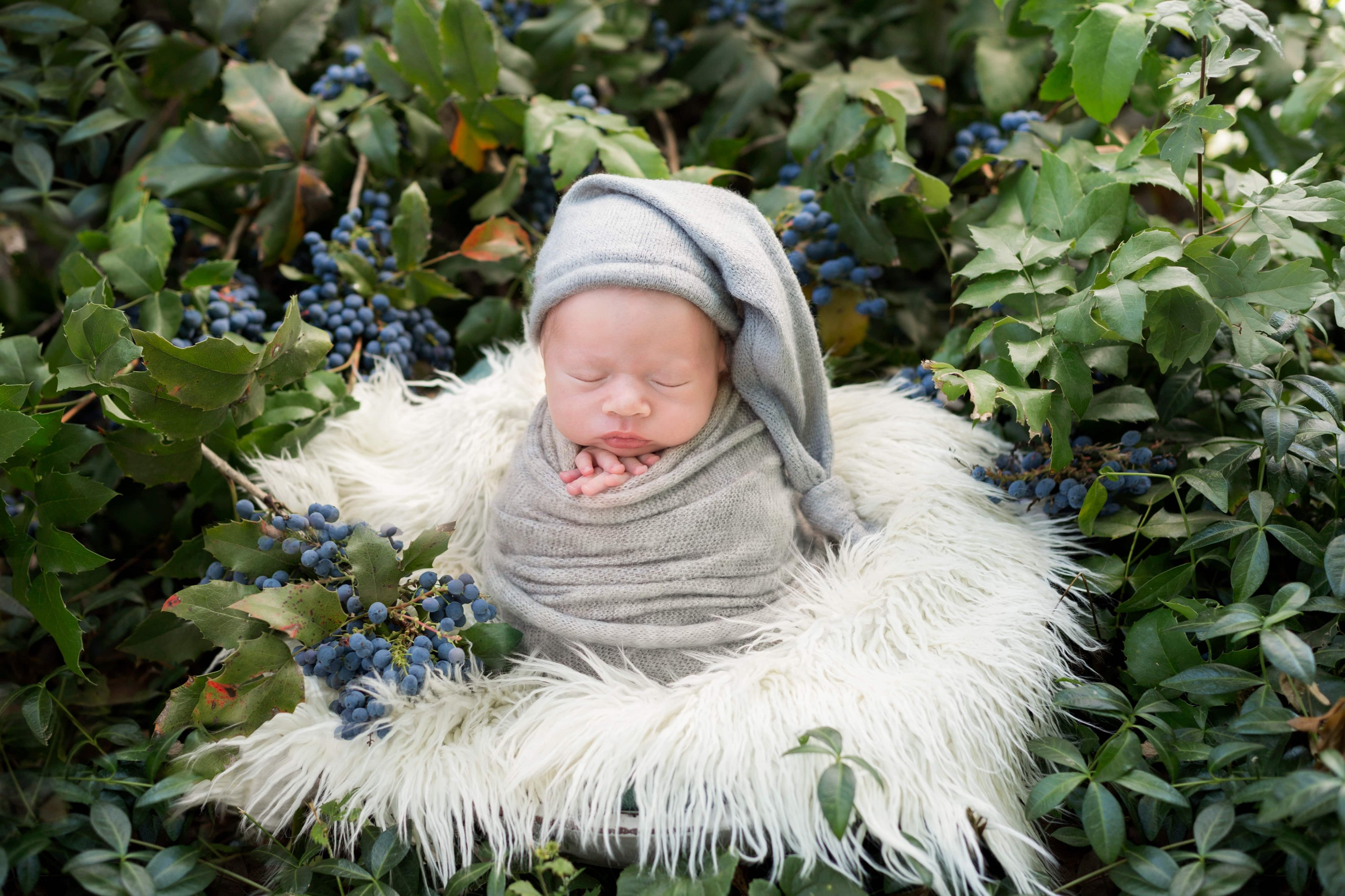 6 Tips Turn Yourself into a Newborn Photography Expert Image7
