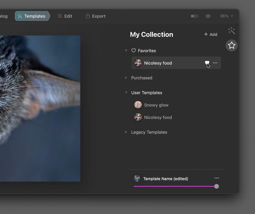 Luminar AI Custom Templates Image3