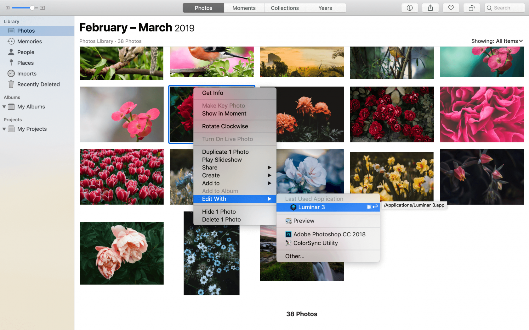 Do You Know All the Functions of Your Mac Photo Editor?  Image3