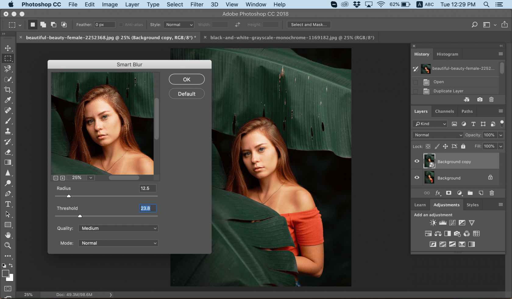 How to Blur a Picture Image4
