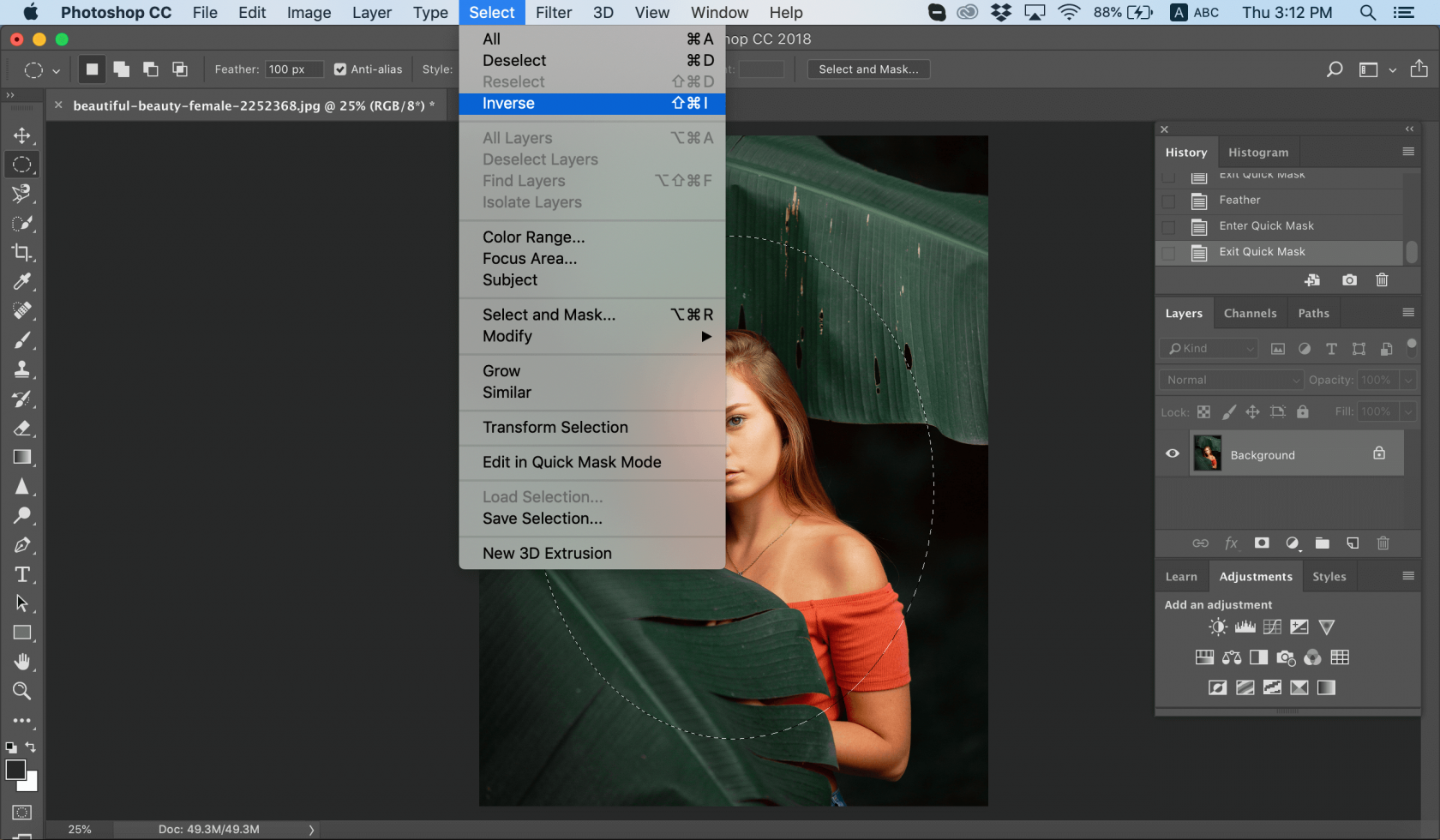How to Blur a Picture Image10