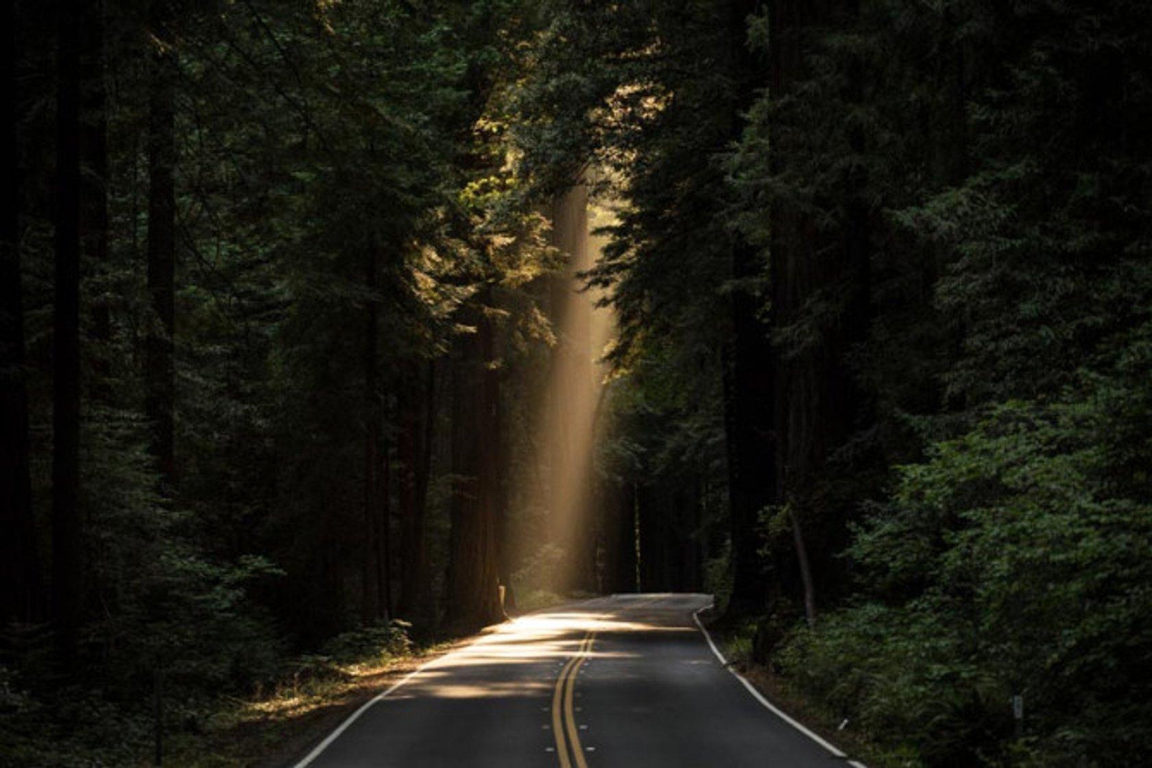 Natural Light In Photography Skylum Blog