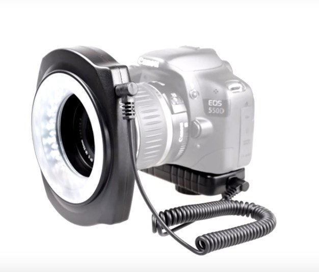 Using a Ring Light in Your Photography Image2