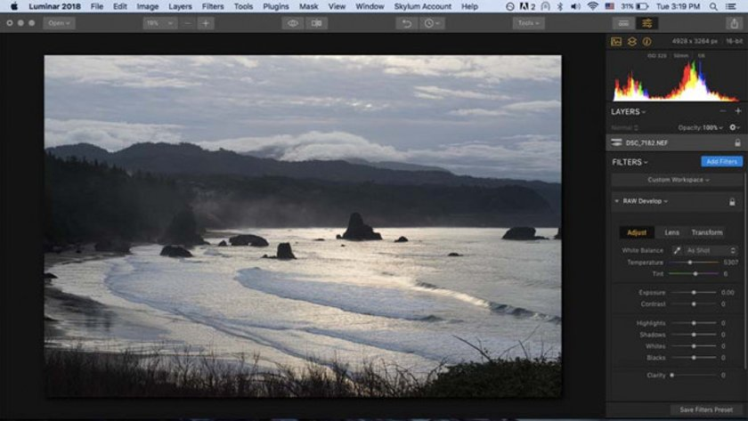 How to Develop Raw Photos in Luminar Image2