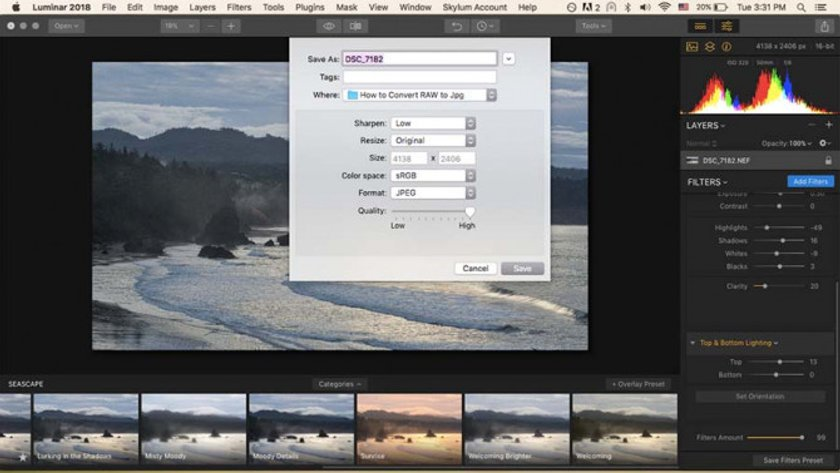 How to Develop Raw Photos in Luminar Image8