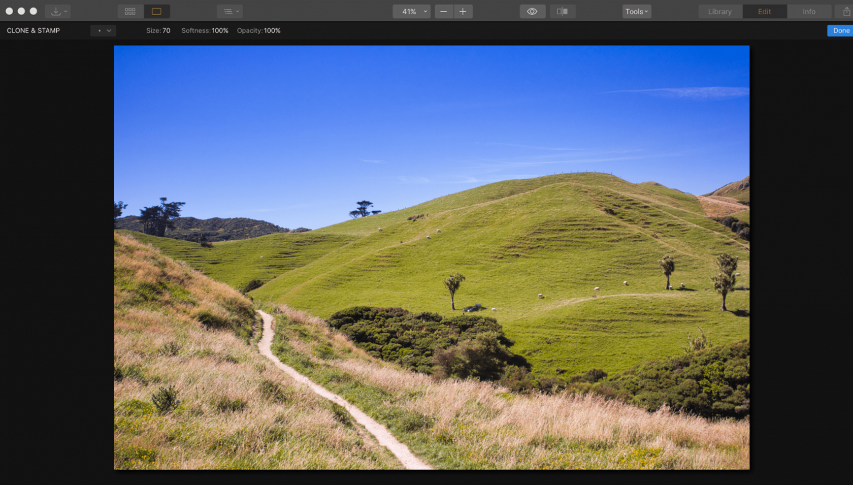 How to Use the Clone Stamp Tool in Photoshop and Luminar 3 for Mac Image3