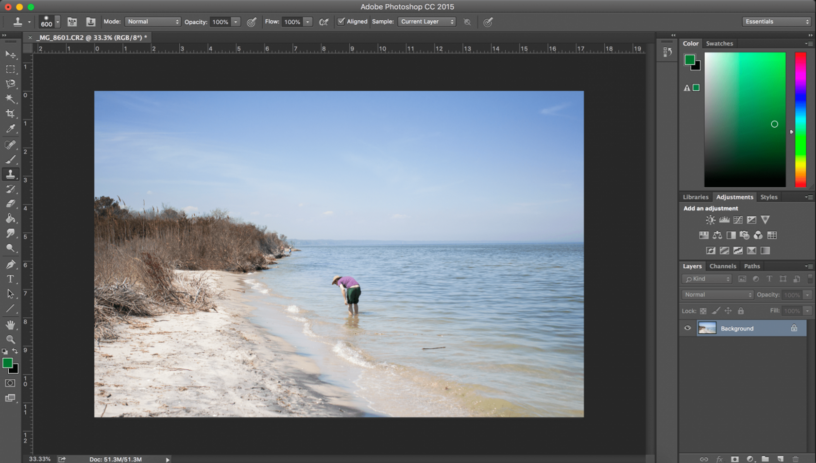 How to Use the Clone Stamp Tool in Photoshop and Luminar 3 for Mac Image10