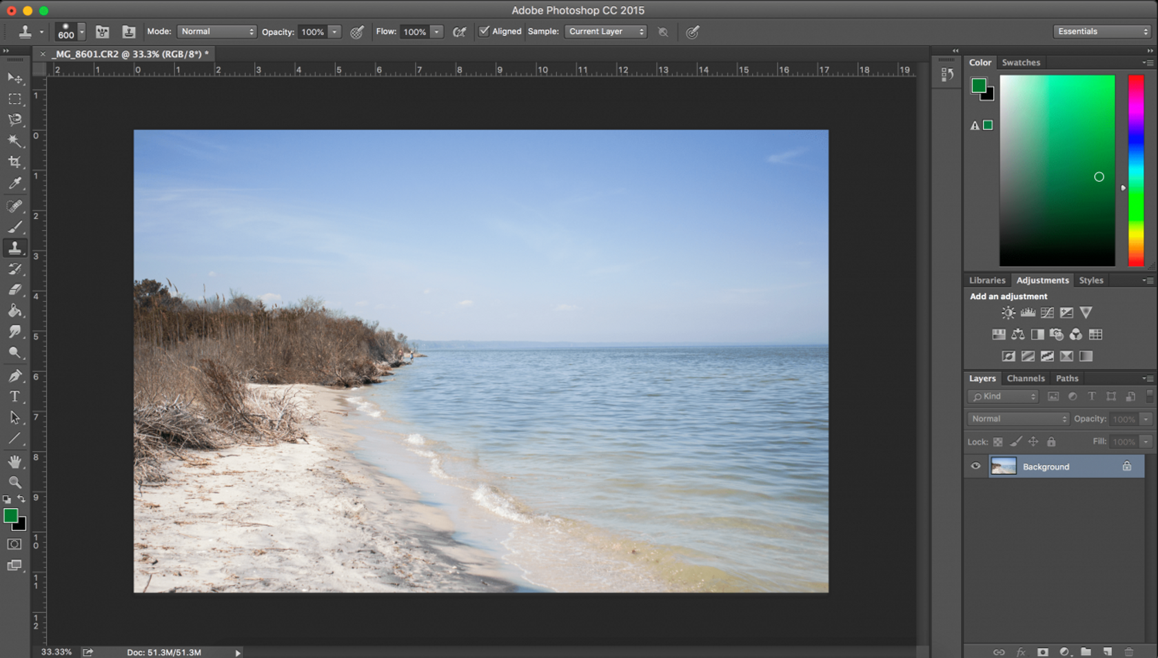 How to Use the Clone Stamp Tool in Photoshop and Luminar 3 for Mac Image11