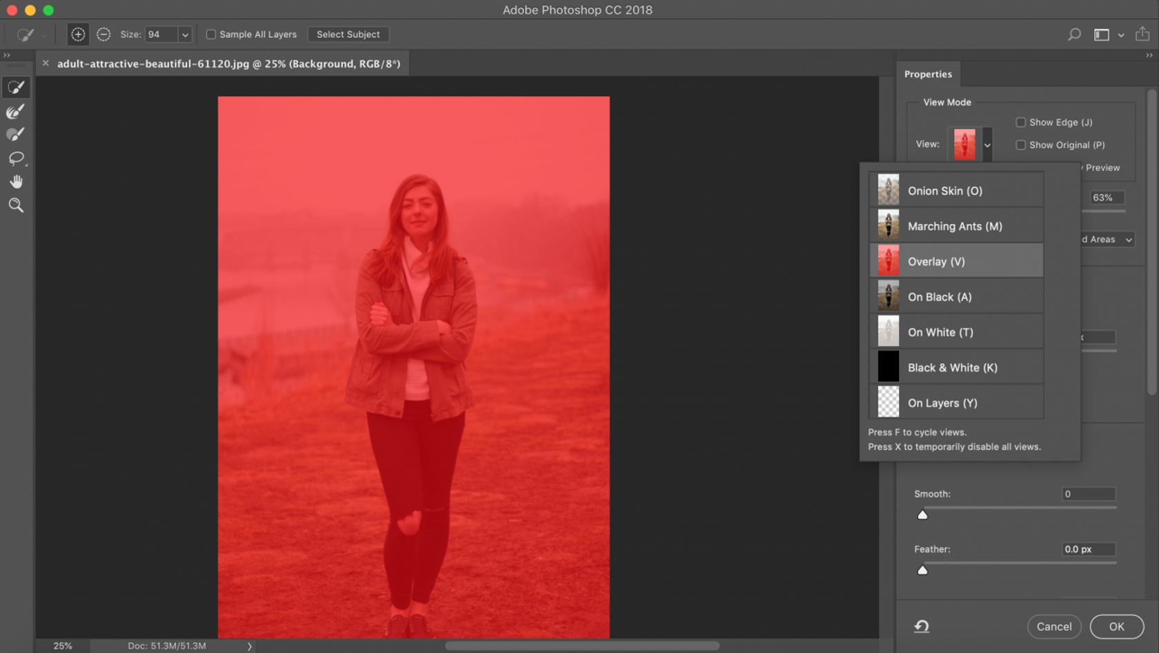How to Smooth Edges in Photoshop: Photoshop Feather and Other Tools Image4
