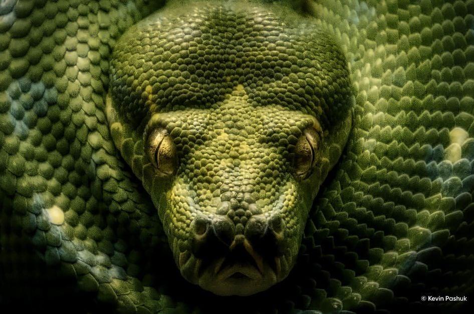 Python noise reduction